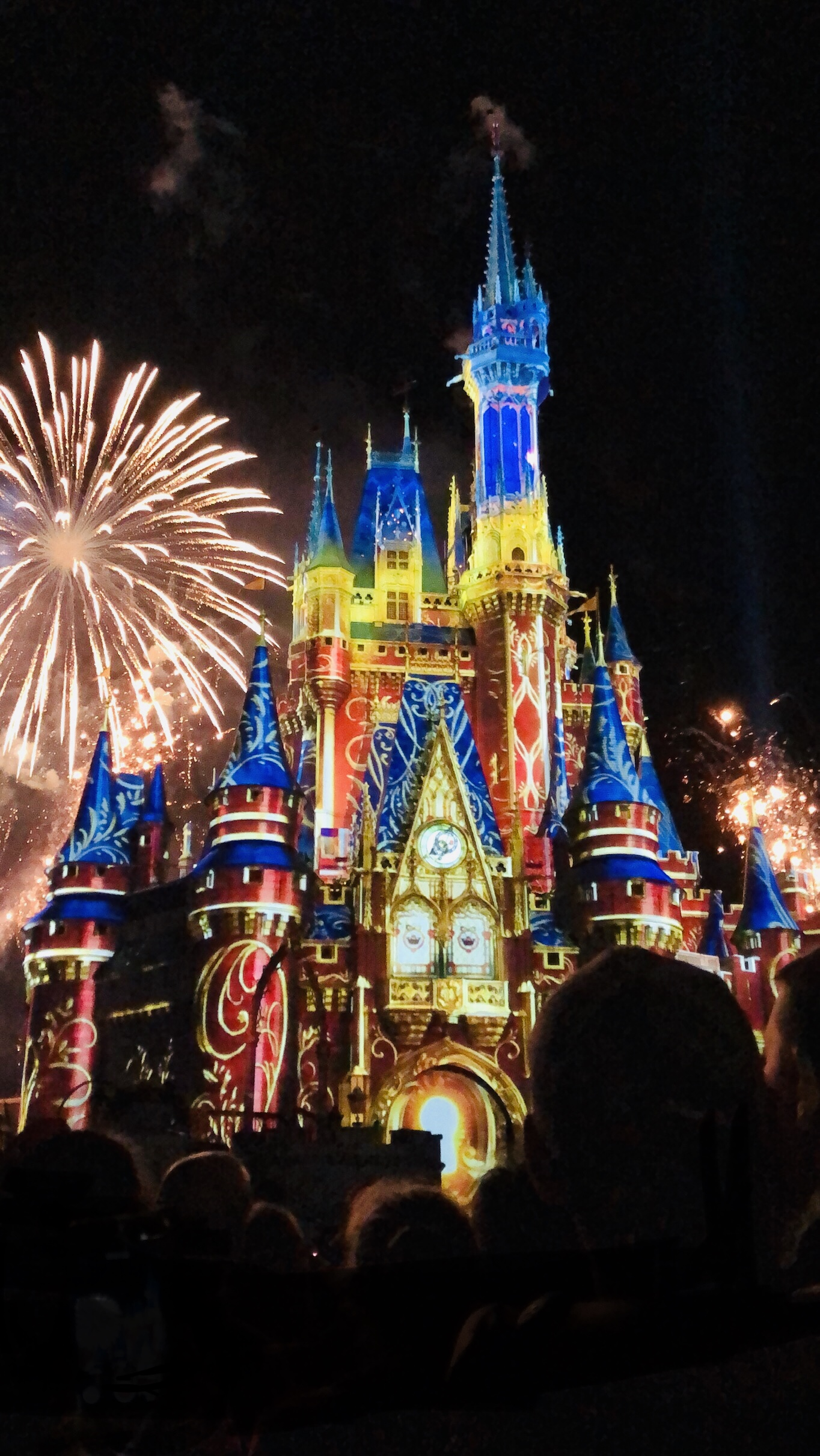 MLHS Band Makes Magic at Disney – The Mountaineer